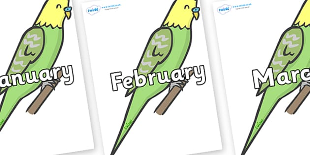Months of the Year on Budgies - Months of the Year, Months poster, Months display, display, poster, frieze, Months, month, January, February, March, April, May, June, July, August, September