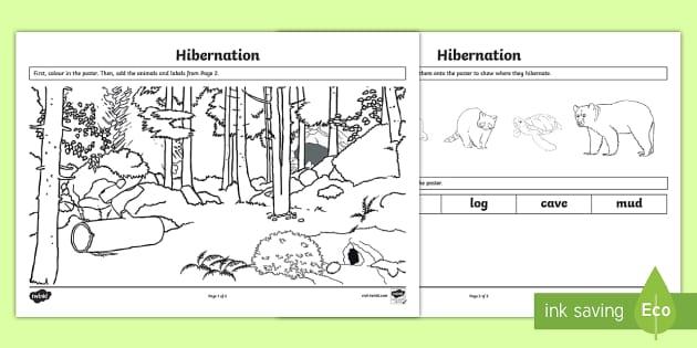 Hibernation Landscape Poster Activity Sheet - Great Canadian Animals, hibernation, animals, worksheets, Canada, hibernate, craft, art, match, matc
