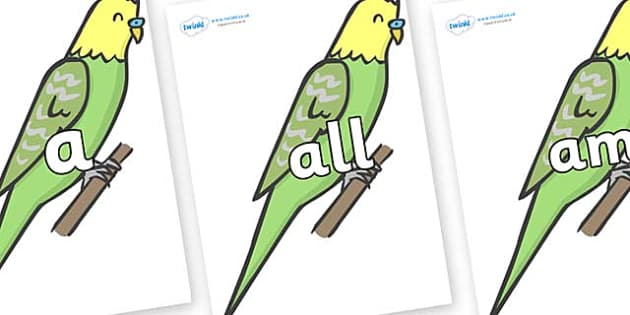 Foundation Stage 2 Keywords on Budgies - FS2, CLL, keywords, Communication language and literacy,  Display, Key words, high frequency words, foundation stage literacy, DfES Letters and Sounds, Letters and Sounds, spelling