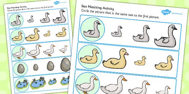 Ugly Duckling Size Matching Worksheets - size, matching worksheet