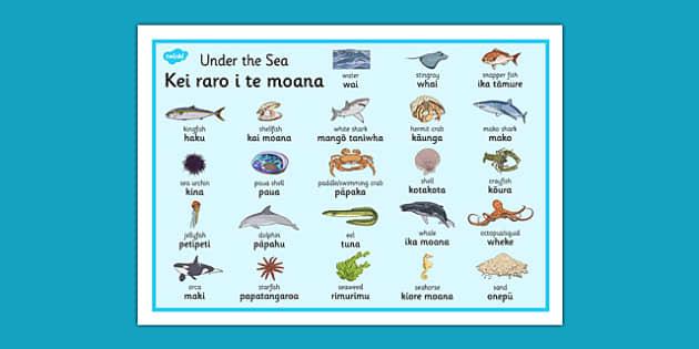 Under the Sea Word Mat Te Reo Māori - sea, seaweek, animals, Māori