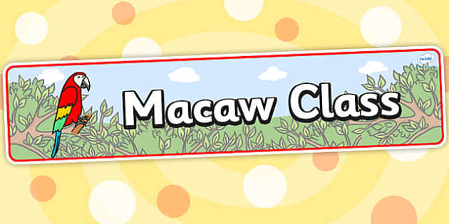 Macaw Class Display Banner - banner, display banner, animals