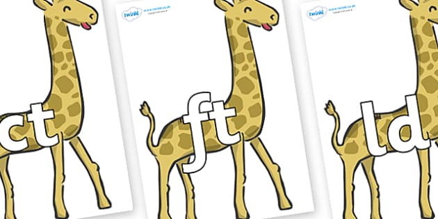 Final Letter Blends on Giraffe - Final Letters, final letter, letter blend, letter blends, consonant, consonants, digraph, trigraph, literacy, alphabet, letters, foundation stage literacy