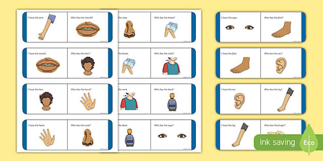 Parts of the Body Loop Cards