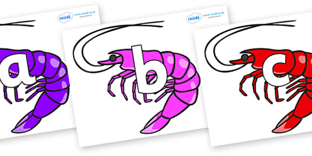 Phoneme Set on Shrimps - Phoneme set, phonemes, phoneme, Letters and Sounds, DfES, display, Phase 1, Phase 2, Phase 3, Phase 5, Foundation, Literacy