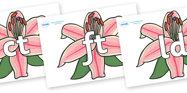 Final Letter Blends on Lilies - Final Letters, final letter, letter blend, letter blends, consonant, consonants, digraph, trigraph, literacy, alphabet, letters, foundation stage literacy