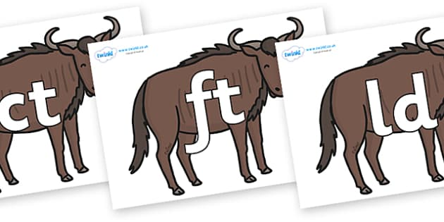 Final Letter Blends on Wildebeests - Final Letters, final letter, letter blend, letter blends, consonant, consonants, digraph, trigraph, literacy, alphabet, letters, foundation stage literacy
