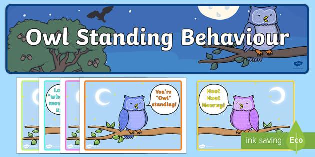 Owlstanding Behaviour Display - owlstanding, behaviour, display