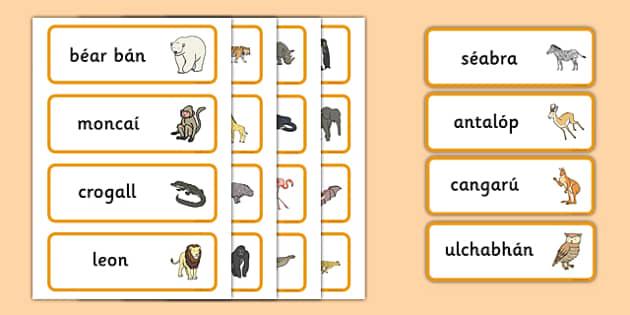 An Zú,   Gaeilge Word Cards-Irish