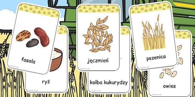 Fiszki ze słownictwem Zboża po polsku - dzieci, darmowe , Polish