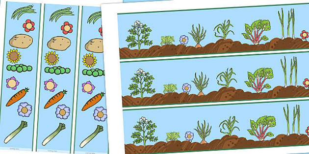 Grow Your Own Display Borders - border, growing, displays, frame