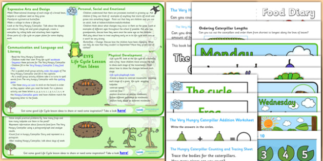 Food labelling lesson plan ks2