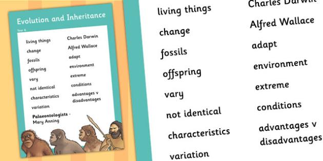 6 Evolution and Inheritance Scientific Vocabulary Poster – Evolution Vocabulary Worksheet