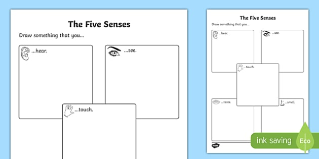 Five Senses Drawing Activity Sheet worksheet – Senses Worksheet