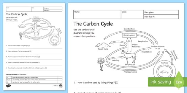Cycle Worksheet – Carbon Cycle Diagram Worksheet