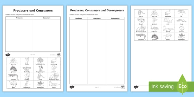 Producers Consumers and Decomposers Sorting Activity Sheets – Producer Consumer Decomposer Worksheet
