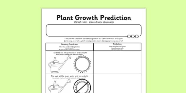 Plant Growth Prediction Worksheet Polish Translation polish – Prediction Worksheet