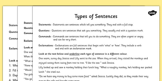 of Sentences Differentiated Activity Worksheet - sentences