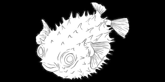 Blowfish Puffer Fish Balloon Fish Animal Ocean Sea Rocky Shore Worksheet