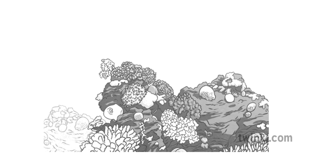 Coral Reef Black And White 1 Illustration Twinkl