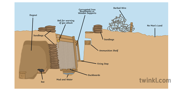 Wwi Trench Diagram Bbc - Fusebox and Wiring Diagram wires-theft -  wires-theft.paoloemartina.itpaoloemartina.it