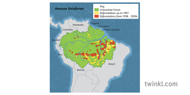 Deforestation of the Amazon Rainforest South America ... on
