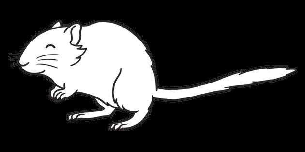 Gerbil Small Mammal Pet Animal Eyfs Black And White Rgb Illustration