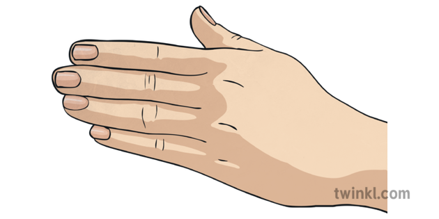 Hand Side Pose Fingers Flat Hands Idioms Proverbs Topics Ks2 Illustration Search more hd transparent hand image on kindpng. hand side pose fingers flat hands