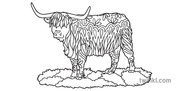 Highland Cow Mindfulness Colouring Animal Cattle Mammal ...