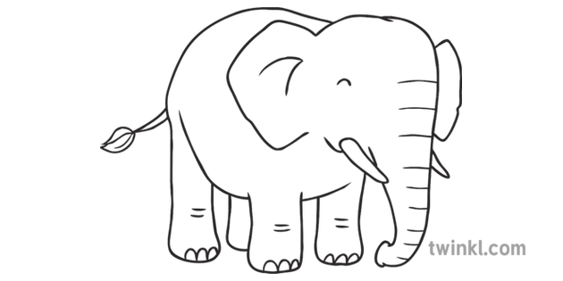 How To Draw An Elephant 7 Art Safari African Animals Ks1 Black And White Elephant safari̇ png cliparts, all these png images has no background, free & unlimited javan rhinoceros drawing elephant, jungle safari png. art safari african animals ks1 black