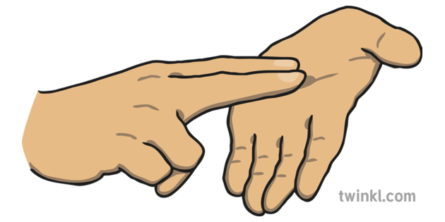 Letter N New Zealand Sign Language Nzsl Illustration Twinkl