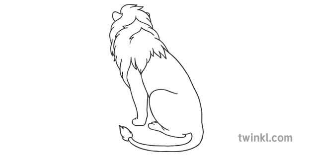 Lion Sitting Back View Black And White Illustration Twinkl