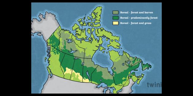 Map of Canada Boreal Zones Provinces Unlabelled Canada ...