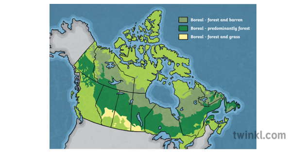 Map Of Canada Unlabelled.Map Of Canada Boreal Zones Provinces Unlabelled Canada Geography Ks2