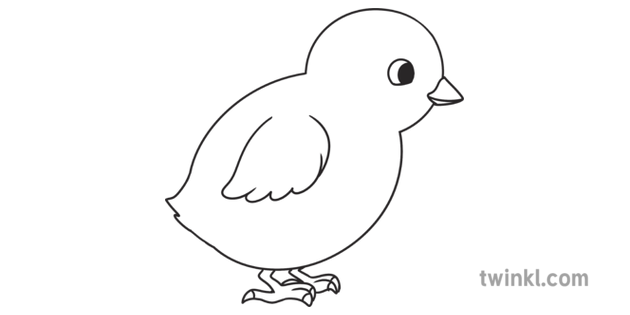 Step 7 Finished How To Draw A Chick Drawing Activity Ks1 Black And White