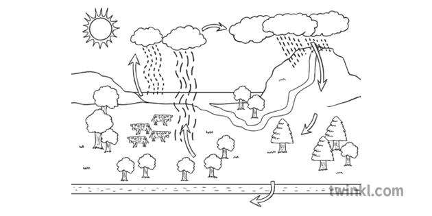 Water Cycle Diagram Geography Ks3 Black And White Illustration