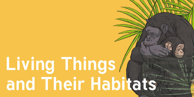 Image result for living things and their habitats