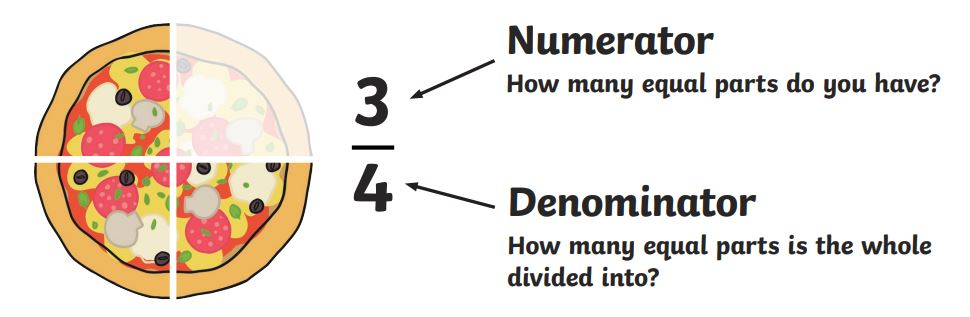 What is the Denominator? - Answered - Twinkl Teaching Wiki