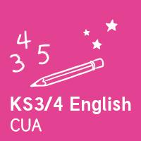 Customer Understanding Assistant - KS3/4 English
