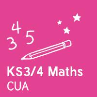 Customer Understanding Assistant - KS3/4 Maths