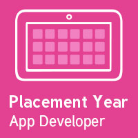App Developer Sandwich Year Placement