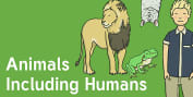 Animals, including Humans