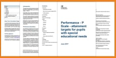 * NEW * P Scales: Attainment Targets for Pupils with SEN Adult Guidance