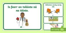 ROI Illustrated Seanfhocail Display Posters Gaeilge