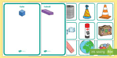 3D Shape Sorting Activity