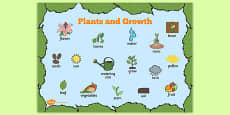 Plants and Growth Topic Word Mat