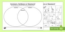 Omnivore, Carnivore or Herbivore Venn Diagram Sorting Activity Sheet