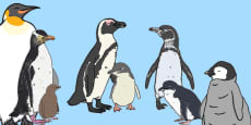 * NEW * Life Size Penguin Cut-Outs