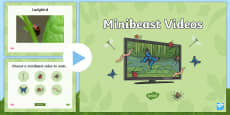 Minibeasts Videos PowerPoint