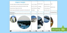 *NEW* Antarctic Animals Factfile Sheets